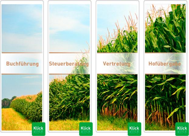 Landwirtschaftliche-Buchstelle-Steuerberatung-Landwirte-Leistungen